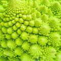 Broccoli Close Up Texture Fractal Background Stock Photography - 52762202
