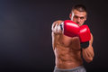The Man In Boxing Gloves Stock Image - 52775781