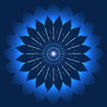 Mystic Blue Flower In Kaleidoscope Style Stock Photos - 52799223