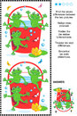 Find The Differences Visual Puzzle - Frogs And Red Bucket Royalty Free Stock Photography - 52826127