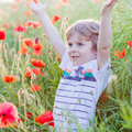 Cute Kid Boy With Poppy Flower On Poppy Field On Warm Summer Day Royalty Free Stock Photo - 52831425