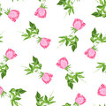 Single Roses Watercolor Seamless Vector Print Stock Photos - 52843133
