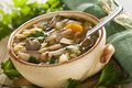 Soup Stock Images - 5291484
