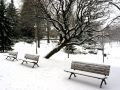 Winter Benches Stock Images - 533684