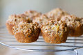 Morning Glory Muffins Royalty Free Stock Photography - 53003867