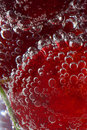 Cherry In Water With Bubbles Stock Image - 5310391