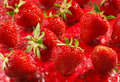 Strawberry Group Stock Photography - 5317652