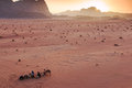 Sunset In The Wadi Rum Desert, Jordan, With Local Bedouins And Camels On Foreground Royalty Free Stock Photo - 53106265