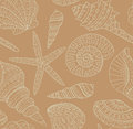 Vector Seamless Pattern With Seashells. Stock Image - 53108791