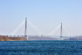 Cable Bridge To Russian Island Royalty Free Stock Image - 53251166