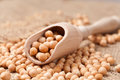 Dry Chickpeas Healthy Nutrition Food In Wooden Stock Image - 53264291