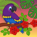 Parrot On Branch With Flowers Stock Photos - 53266143