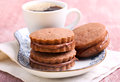 Chocolate Cream Sandwich Biscuits Royalty Free Stock Photos - 53304408