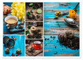 Collage Tea Brew Royalty Free Stock Photos - 53350398