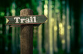 Forest Trail Sign Royalty Free Stock Images - 53350869