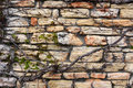 Stone Wall With Ivy Royalty Free Stock Photo - 53400095