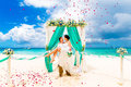 Wedding Ceremony On A Tropical Beach In Blue. Happy Groom And Br Stock Photos - 53464133