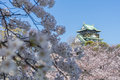 Osaka Castle With The Cherry Blossoms Stock Photos - 53491243