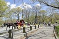 Central Park New York City Royalty Free Stock Photo - 53558105