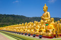Golden Buddha, Thailand Royalty Free Stock Photography - 53566137
