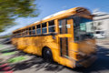 School Bus Royalty Free Stock Images - 53579979