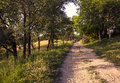 Man On Bicycle On Pathway Stock Images - 53583304