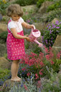 Cute Girl Watering Flower In The Garden Royalty Free Stock Image - 5362646