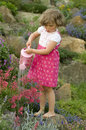 Cute Girl Watering Flower In The Garden Royalty Free Stock Photo - 5362665