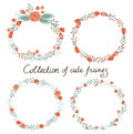Floral Frame Collection. Stock Photo - 53602970