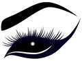 Abstract Female Eye With Long Lashes Royalty Free Stock Image - 53673796
