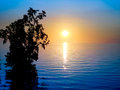 Sunset Over Sea With Mangroves Stock Images - 53673994