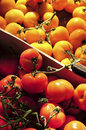 Tomatoes On The Market Royalty Free Stock Images - 5379909