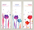 Vintage Vertical Banners Set With Watercolor Stock Photo - 53709630
