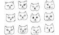 Vector Sketch Beautiful Cat Muzzle Stock Image - 53735141