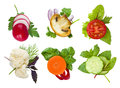 Collage Of Sliced Herbs And Vegetables Spots Isolated On White Stock Images - 53735414
