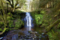 Beautiful Cascading Waterfall, Nant Bwrefwy, Upper Blaen-y-Glyn Stock Images - 53761194