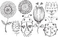 Doodle Spring Flower Bug Vector Set Royalty Free Stock Photography - 53793717