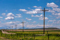 A Line Of Telephone Poles Stock Photos - 53793853