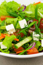 Salad With Greens Royalty Free Stock Images - 5380529