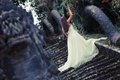 Beauty And The Beast Royalty Free Stock Photos - 53839378