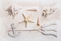 Summer Maritime Decoration With Starfish, Anchor And Sea Shells Stock Photo - 53845090