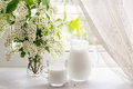 Bouquet Of Bird Cherry And Milk On The Window Royalty Free Stock Photos - 53885248