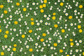 White Daisies And Yellow Dandelions Royalty Free Stock Images - 53900119