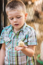 Interested Child With Baby Bird Royalty Free Stock Photo - 53929895
