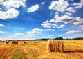 Stubble Field And Hay Bales Royalty Free Stock Photography - 53946067