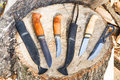 Bowie Knives On Wooden Stump Stock Photography - 53994552