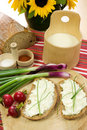 Slice Of Bread Spread With Sheep Cheese Royalty Free Stock Photography - 5400997