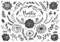Rustic Decorative Plants And Flowers Collection. Hand Drawn Royalty Free Stock Photo - 54000455
