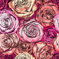 Retro Seamless Pattern With Rose Flowers Royalty Free Stock Photos - 54001358