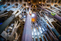 Ceiling And Columns Of Sagrada Familia Stock Photography - 54051222